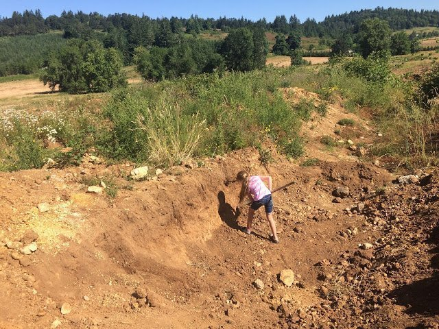 Digging for petrified wood at Holleywood Ranch, Oregon