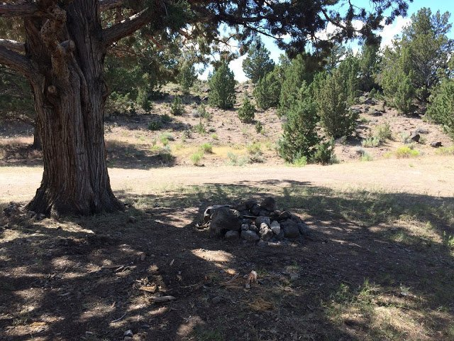 Campsites at Glass Butte