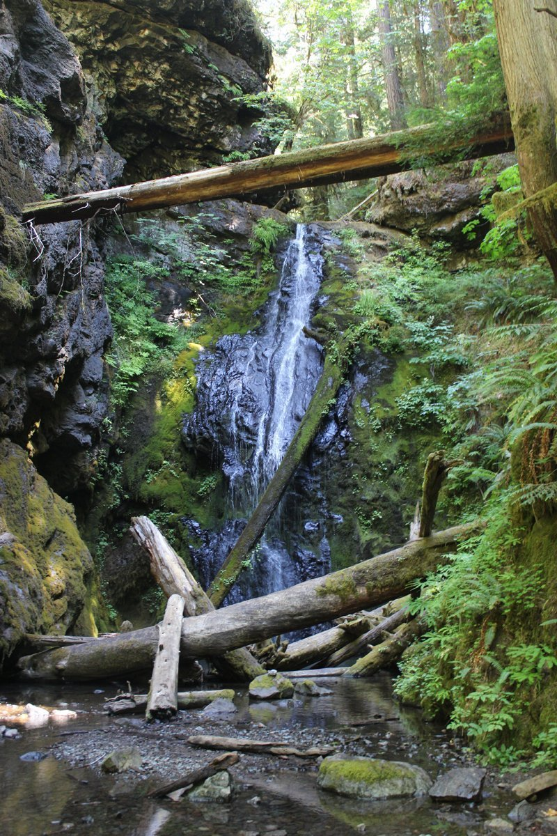 Trestle Creek Falls