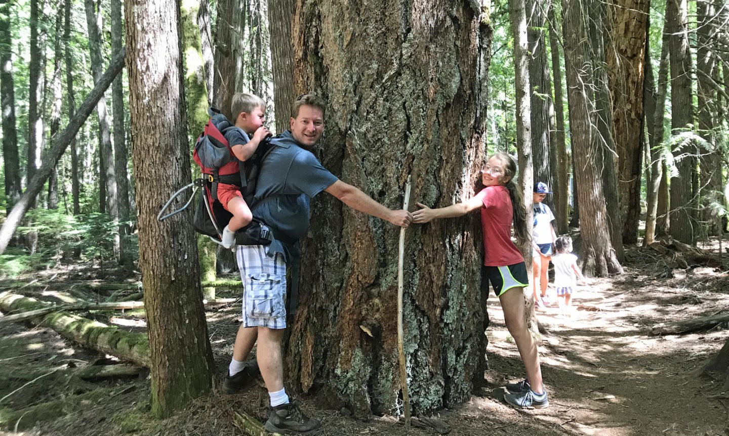 Kids and man hugging a huge tree